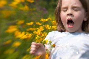 Sneezing Allergy